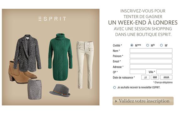Esprit Mood Board_在线应用开发