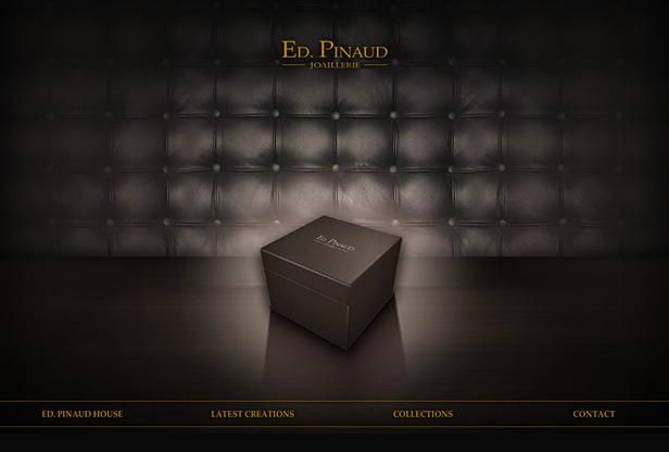 ED. PINAUD_网站开发