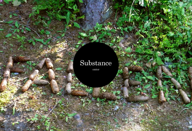 SUBSTANCE Agency_网站开发
