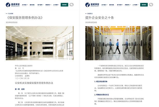 D'Anchor Security_网站开发
