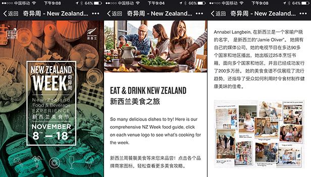 New Zealand Week 2017_网站开发